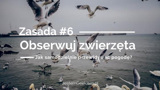jak_przewidywac_pogode_6